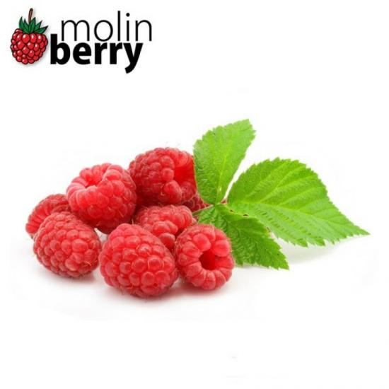 Molinberry Pink Raspberry 10ml